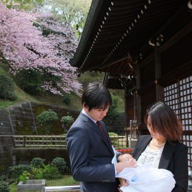 山桜咲く神社で撮ったお宮参り記念日の家族写真