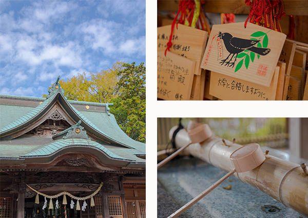 金川兼横浜市港北区にある師岡熊野神社の外観写真