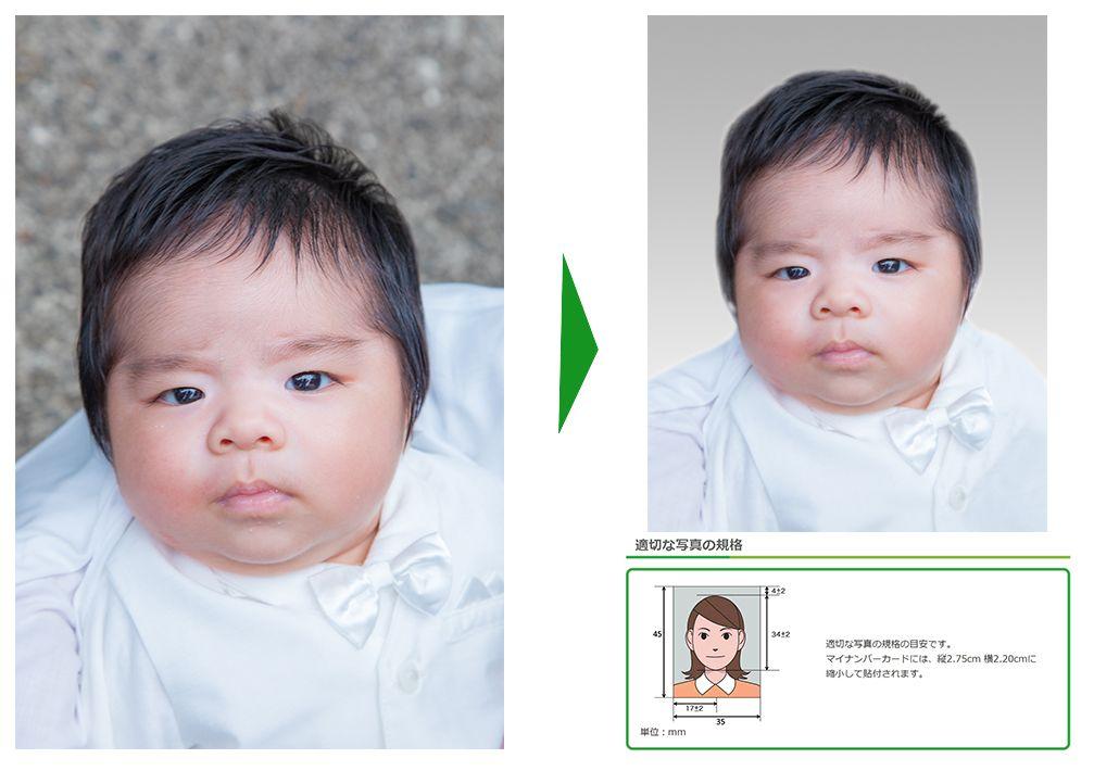 マイナンバーカード 赤ちゃん 写真 撮り方